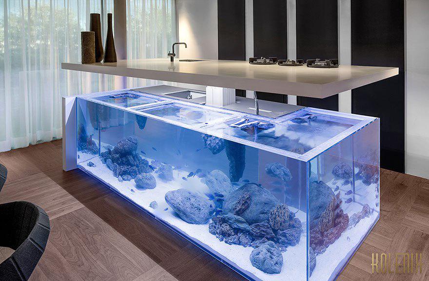ilot aquarium